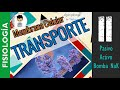 Gambar cover TRANSPORTE A TRAVES DE LA MEMBRANA CELULAR | FISIOLOGÍA CELULAR | P2
