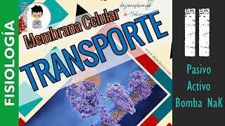 Membrana Celular 2 TRANSPORTE