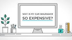 Why is my car insurance so expensive? | The Zebra
