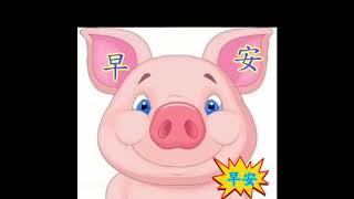 Lunar new year 2019 Year Of Pig Talking In Hokkien