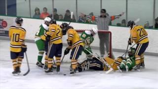 Wayzata vs. Edina Boys High School Hockey