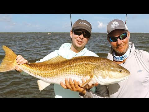 How To Catch Bull Redfish In Louisiana (Tips, Mistakes & Lures)