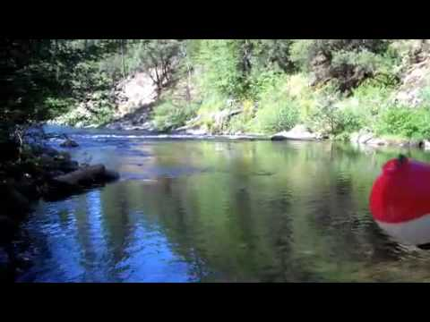 Stanislaus river fishing near boards crossing youtube for Stanislaus river fishing