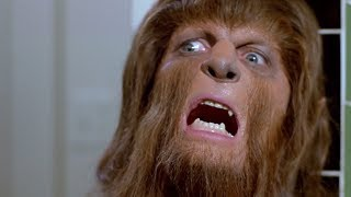 What Would Happen If Werewolves Were Real??