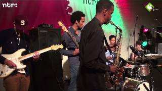Licks & Brains, Robert Rook, Joel Wilson en Dutch Groove - Mijke