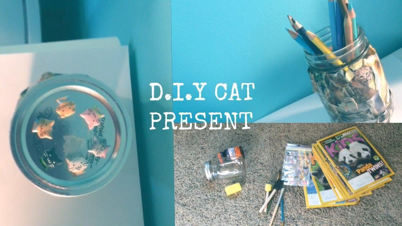 DIY CAT BIRTHDAY PRESENT