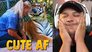 Owning A Pet Tiger - Reaction