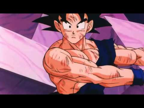 Goku Teaches Vegeta The Fusion Dance 1080P