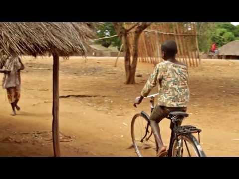 Mozambique 2013 - (Iris)