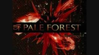 Watch Pale Forest Revelation video