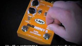T-Rex Effects: MUDHONEY II (Stratocaster to Laney VC50 clean channel)