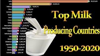 Top Milk producing Countries 1950 2020 Top Milk producing countries India Pakistan USA