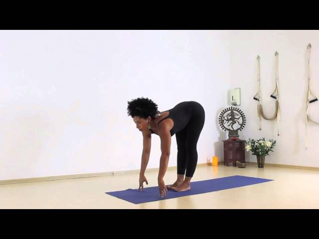 Faça uma prática completa de Vinyasa Flow Yoga nível intermediário com Karime Neder.