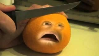 Annoying Orange Gets BLENDED_360pmp4