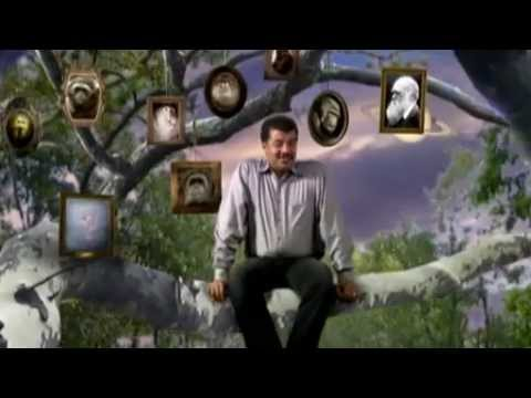 NOVA scienceNOW : 53 - Sleep, First Primates, Earthquakes in the Midwest, Profile: Sang-Mook Lee