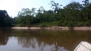 Kolumbien / Colombia - Amacayacu River Adventure