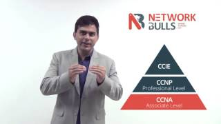 How to become Network Administrator by taking CCNA, CCNP and MCSE Certification Trainings