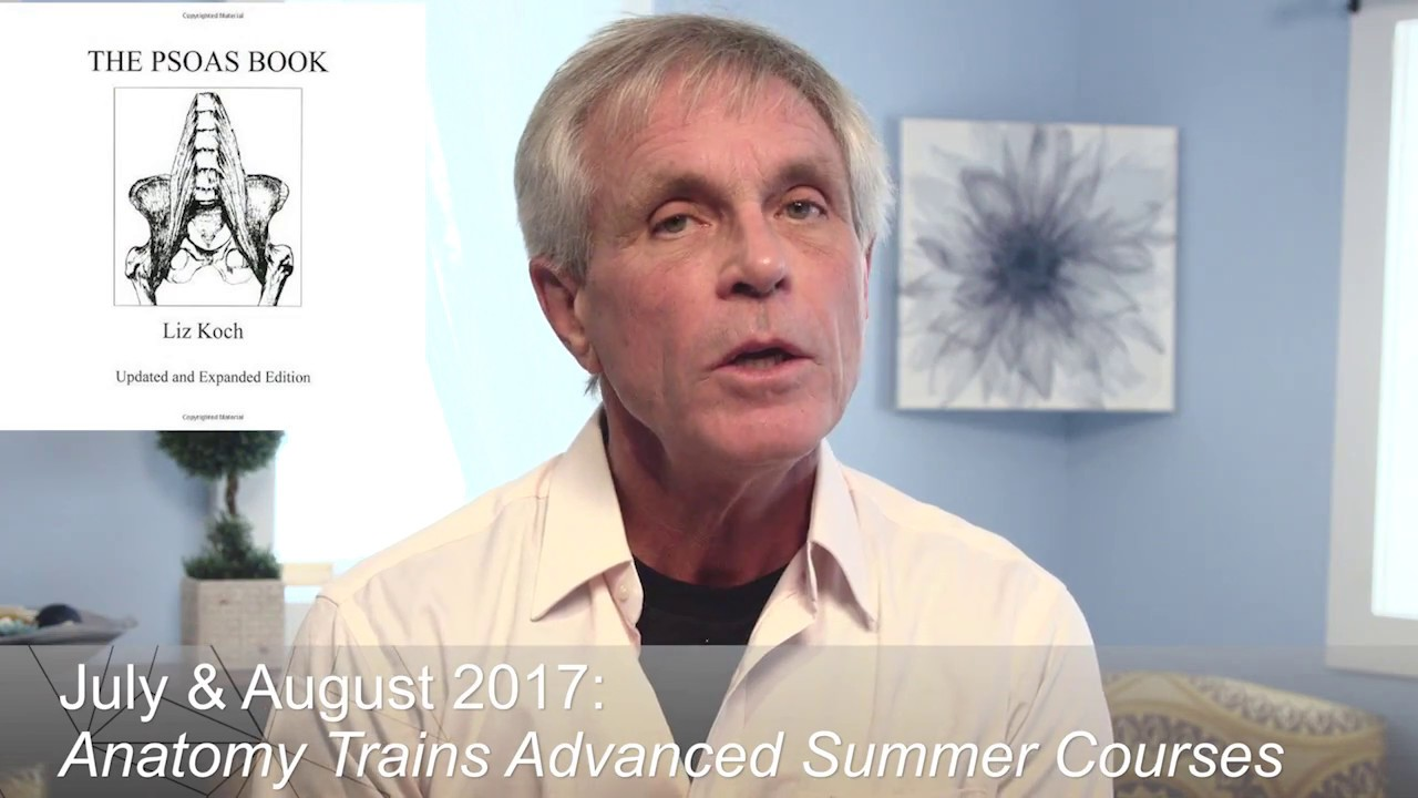 Tom myers anatomy trains courses