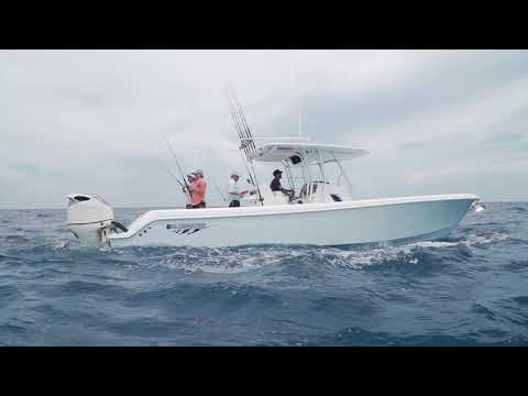 FS Boat Review - Bluewater 355e