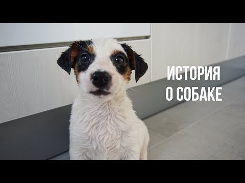 ПЕРВЫЙ МЕСЯЦ ДОМА | Karolina K