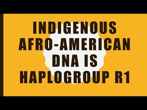 Indigenous Afro American DNA is R1