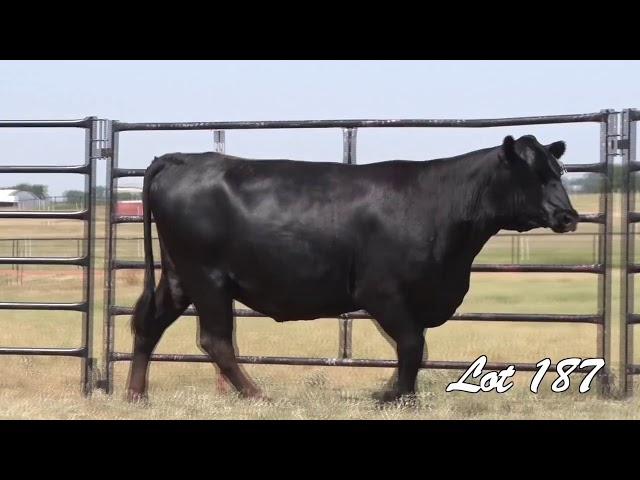 Pollard Farms Lot 187