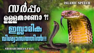 സർപ്പം ഉള്ളതാണോ? ഇസ്ലാമിക വിധി   Latest Islamic Speech In Malayalam 2017   Shihabudeen Faisi