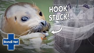 Vet Rescues A Seal With A Hook In It's Mouth Found In The River Thames! | Full Episode | Bondi Vet