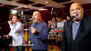 Spanish Harlem Orchestra performs This is Mambo
