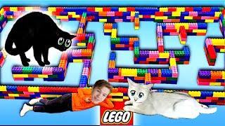 Самый Большой В Мире ЛЕГО Лабиринт Для Кошек! Челлендж!!!