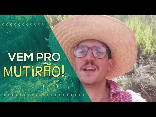 PorQueNão? na Prática: vai começar a agrofloresta! // Guto Zorello // PorQueNão?