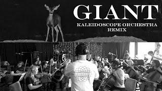 Baixar Giant - Kaleidoscope Orchestra Remix [Calvin Harris, Rag 'n' Bone Man]