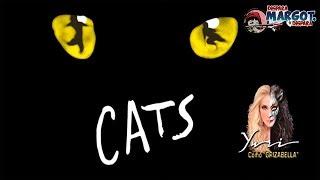 Cats, el Musical la Reseña de Claudia Silva