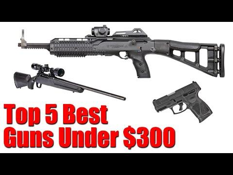 Top 5 Best Guns Under $300