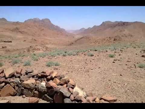 Omega Man Desert Survival Blog 1- The Sinai