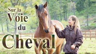 Sur la Voie du Cheval - documentaire - français sous-titres