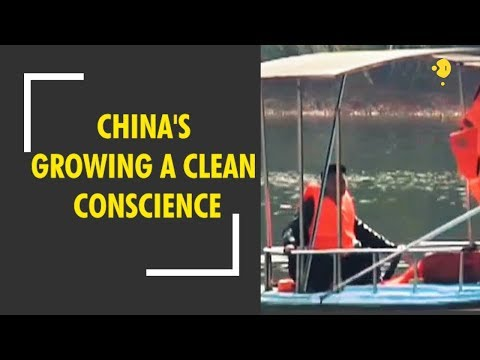 China's growing a clean conscience: Cleaning up the Yangtze