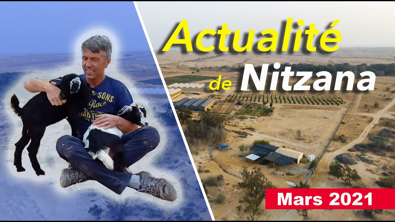 Actualité de Nitzana Mars 2021