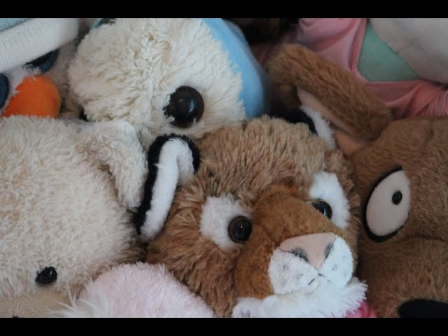 Bereavement: What to do with my daughter's STUFF -  toys, clothes