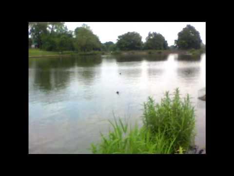 Thames Water London uk