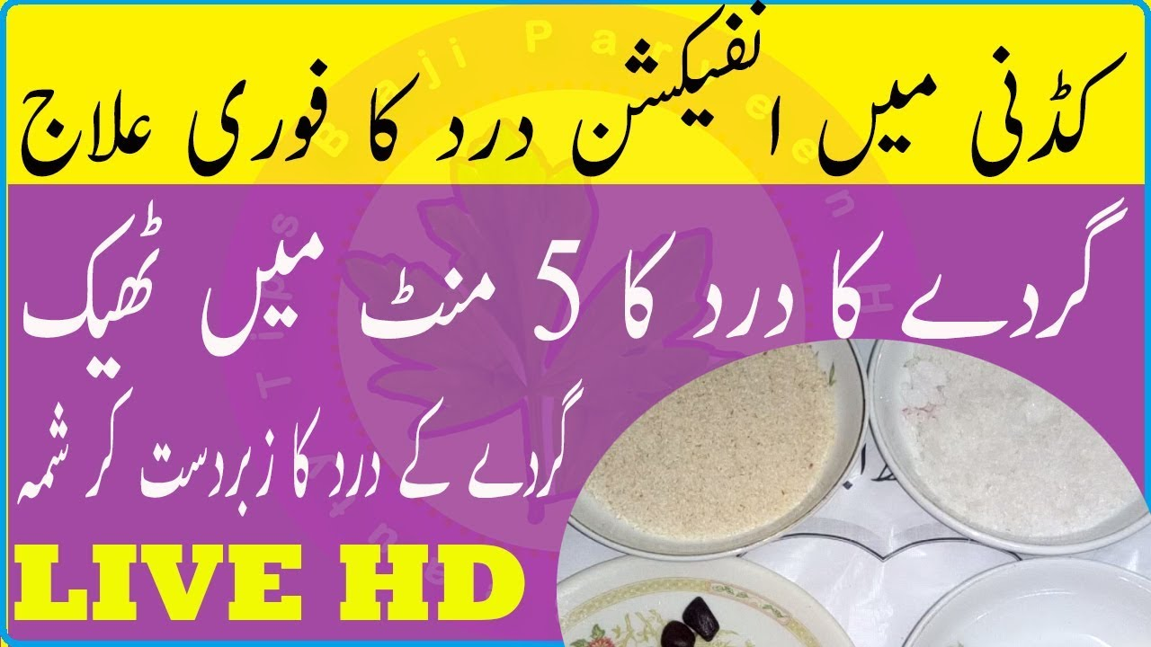 Kidney Infection Treatment How To Diagnose And Treat A Kidney Infection Diet For Kidney Infection Youtube