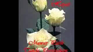 Jamilul Hayat - Mawar Putih Tanda Perpisahan.