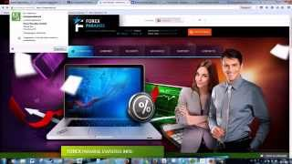 Обзор проекта Forex Paradise.biz