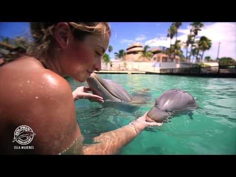 Vídeo Olympus Tours Cancun e Riviera Maya para Convenção CVC , Atibaia 2015