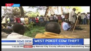 Peace building elders in West Pokot recovered 5 cows stolen by suspected bandits