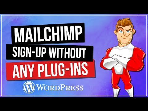 WordPress MailChimp Signup Form Without Plugins - 동영상