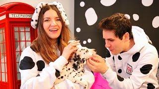 ANDIAMO A LONDRA! Incontriamo i cuccioli di Dalmata