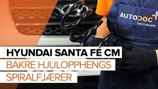 Hvordan bytte Glødelampe Nummerskiltlys HYUNDAI SANTA FÉ II (CM) - online gratis video