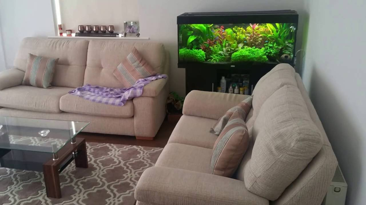 Charming Fish Tank   Amazing Addition To Your Sitting Room