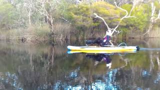 Lindy on her Hobie i11S Cruising the Upper Noosa River